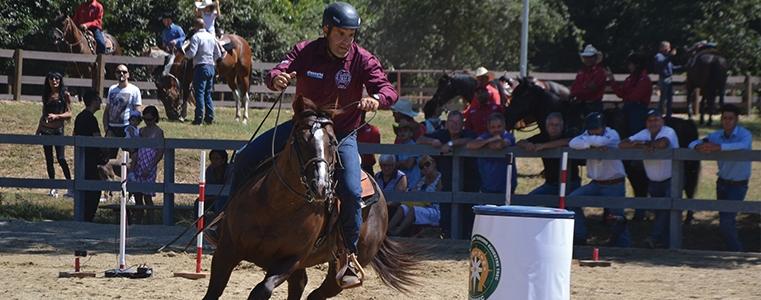 incontri equestri online